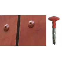 Vis inox TCB autoperçeuse P3 Ø5,5 - Fixation de panneaux de façade sur support métallique