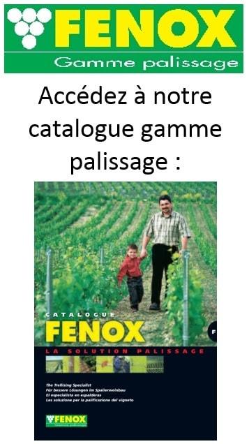 car fenox